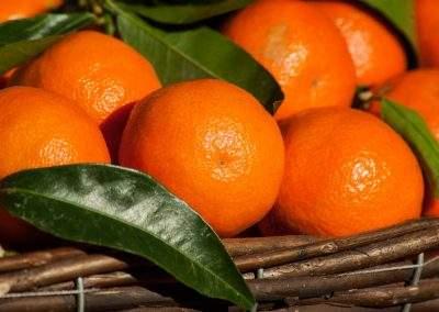 Mandarinos sütemény