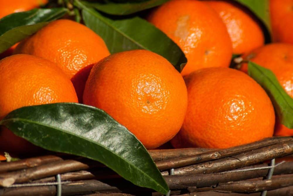 fruit-1960405_1280