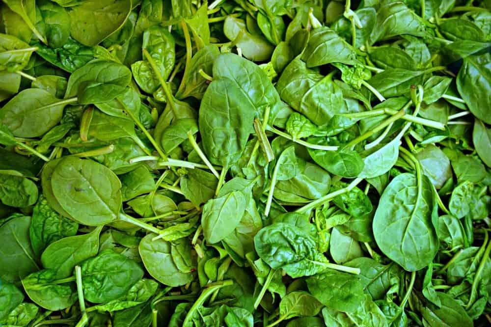 spinach-1522283_1280